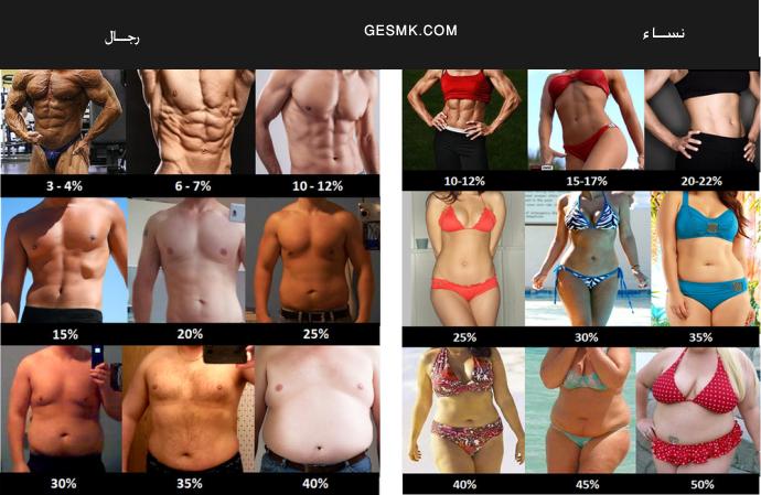 كيف تحصلين على عضلات البطن 9